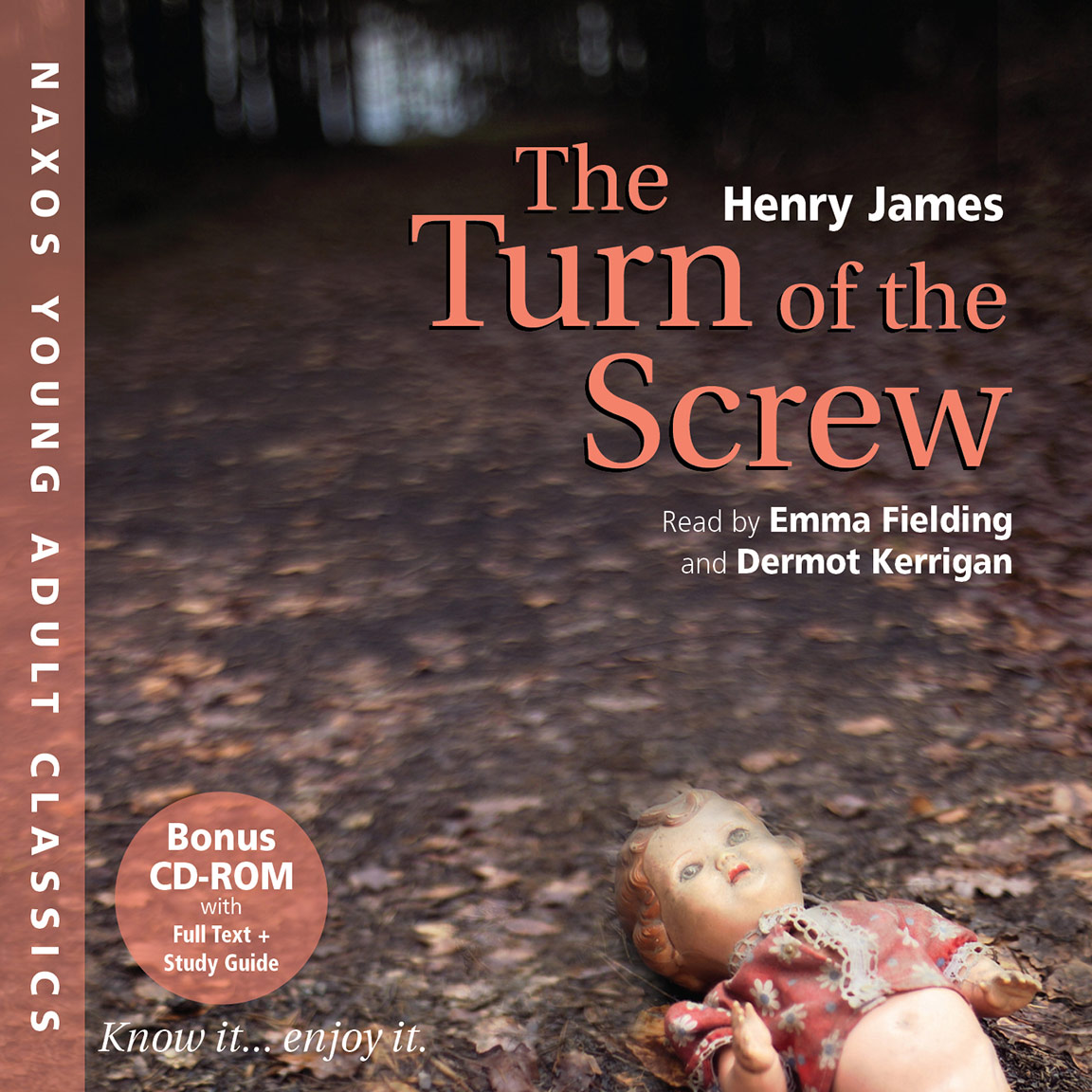 an analysis of the topic of the governess in the turn of the screw by henry james In the novella turn of the screw by henry james, the owner of the estate at bly, a bachelor left to take care of his young niece and nephew, seeks a.